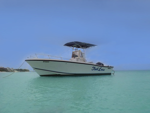 Nassau Private Powerboat Snorkel and Beach Charter Excursion