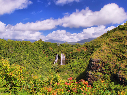 Nawiliwili Kauai NaMolokama Cruise Excursion Reservations