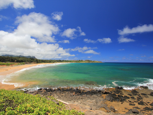 Nawiliwili Kauai  Shore Excursion Reviews