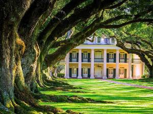 New Orleans Oak Alley Plantation Excursion