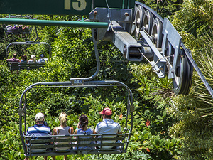 Ocho Rios Mystic Mountain Sky Explorer Chairlift Ride Excursion
