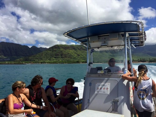 Oahu (Honolulu) Hawaii snorkel with dolphins Shore Excursion Tickets