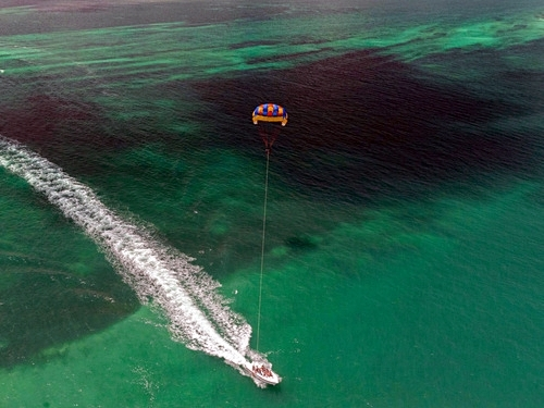 Mahogany Bay parasailing at West End Cruise Excursion Tickets