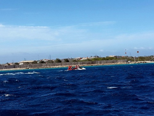Curacao tugboat wreck snorkel Tour Reviews