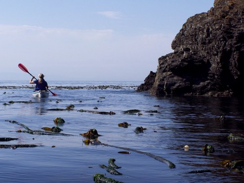 Ensenada  Mexico Kayaks for one or two Tickets