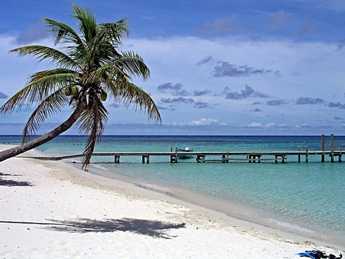 Roatan  Honduras beach break Booking