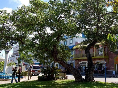 Bridgetown city sightseeing Shore Excursion Cost