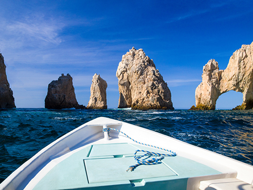 Cabo San Lucas Mexico Baja whale watching Tour Cost