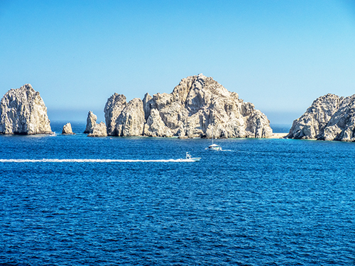 Cabo San Lucas breeching whales Cruise Excursion Prices
