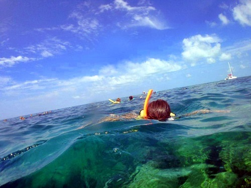 Key West sail and snorkel Excursion Cost