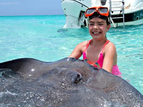 Cayman Islands coral gardens Trip Booking