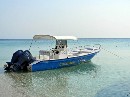 Roatan  Honduras snorkel Trip Reviews
