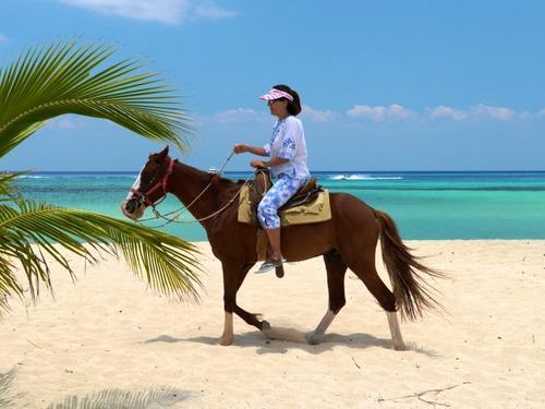 Cozumel beach horse ride Shore Excursion Prices