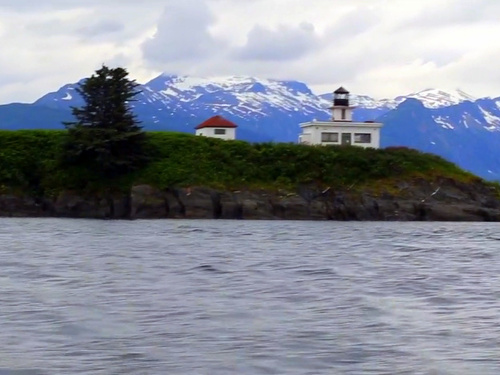Juneau Alaska whale watching Cruise Excursion Prices
