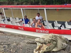 Puerto Caldera Crocodile Encounter and Tarcoles River Cruise Half Day Excursion