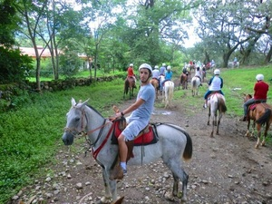 Puerto Caldera Rainforest Horseback Riding and Aerial Tram Excursion