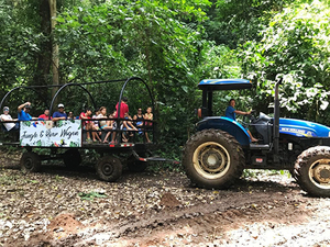 Puerto Caldera Rainforest Wagon Ride and Tarcoles River Eco Cruise Excursion