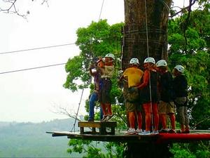 Puerto Limon Canopy Zip Line and Banana Plantation Excursion