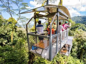 Puerto Limon Veragua Rainforest Exploration and Aerial Tram Excursion