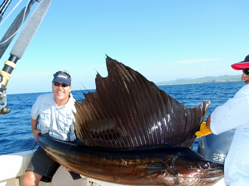 Cabo san lucas private sport fishing charter excursion for Fishing cabo san lucas