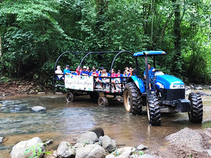 Puntarenas Rainforest Wagon Ride and Tarcoles River Eco Cruise Excursion