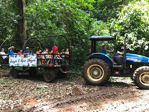 Puntarenas Rainforest Wagon Ride Half Day Excursion