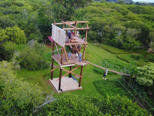Maui Hawaii ziplining Shore Excursion Prices
