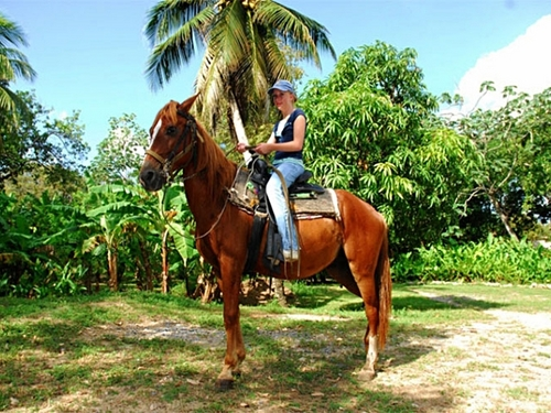 Roatan Honduras sightseeing Excursion Prices