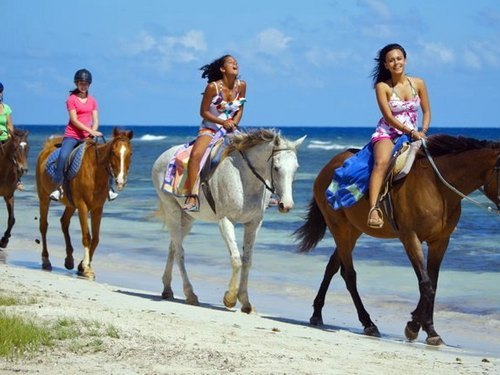 Montego Bay  Jamaica ocean swim with horses Booking