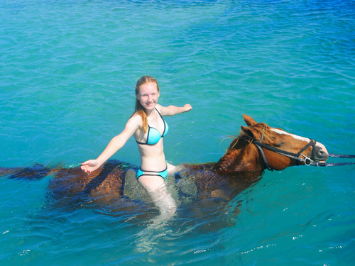 Falmouth horse riding through water Prices