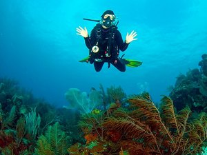 Roatan 2 Tank Certified SCUBA Dive Excursion and Mayan Princess Beach Break