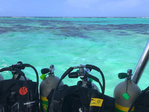 Roatan Honduras beginners dive Shore Excursion Prices