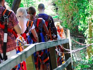 Roatan Eco Walkways, Treetop Suspension Bridges and Zip Line and Beach Break Adventure Excursion
