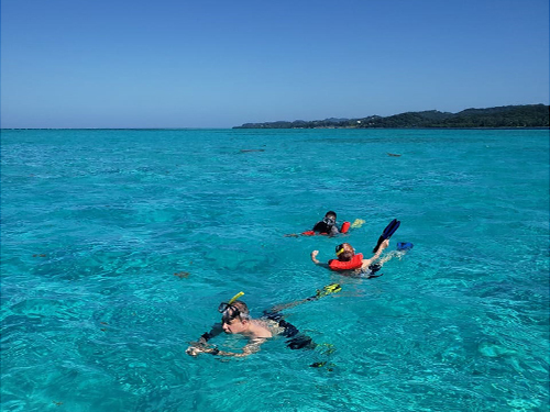 Roatan Honduras Family Sightseeing Tour Reviews