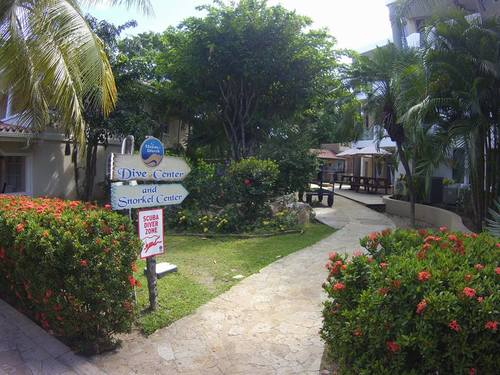 Roatan Guided Snorkel Shore Excursion Tickets