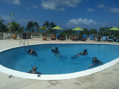 Roatan Honduras discover scuba diving Cruise Excursion Reservations