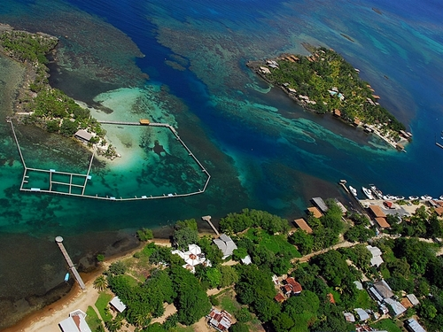 Roatan highlights Cruise Excursion Cost