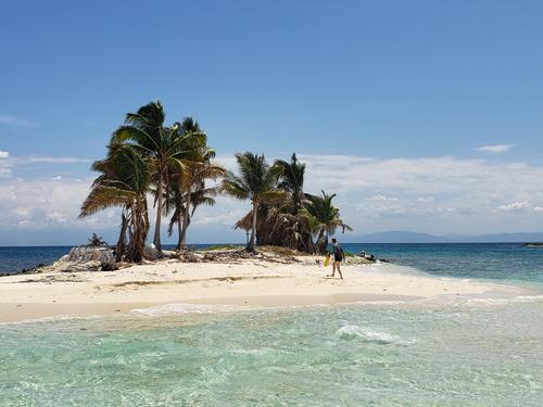 Roatan  Honduras Private Eco nature Boat Trip Reviews