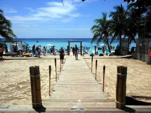 Roatan Honduras suspension bridges Trip Prices