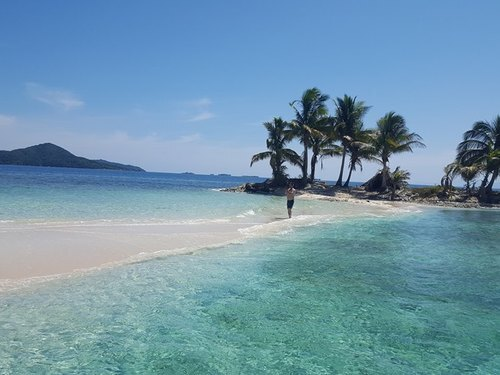 Roatan  Honduras swimming Boat Cruise Excursion Reservations