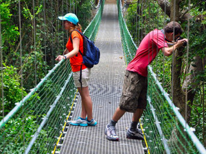 Roatan Jungle Eco Walkway, Treetop Suspension Bridges and Beach Break Excursion
