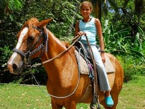 Roatan Jungle Horseback Riding Adventure Excursion