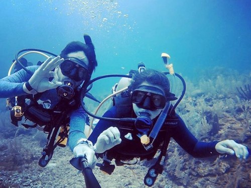 Roatan Honduras beginners dive Trip Booking