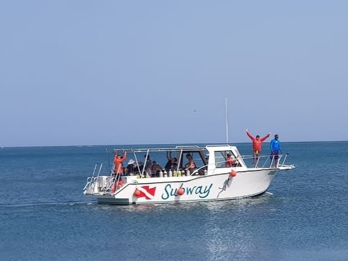 Roatan learn to dive Tour Reviews