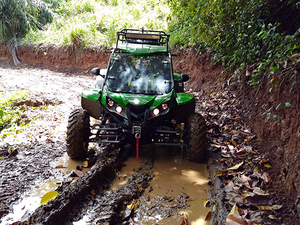 Roatan Off-Road Buggy and Beach Break Excursion