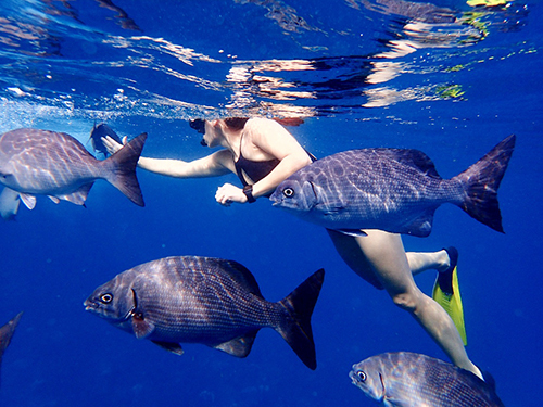 Roatan  Honduras french cay Tour Reservations