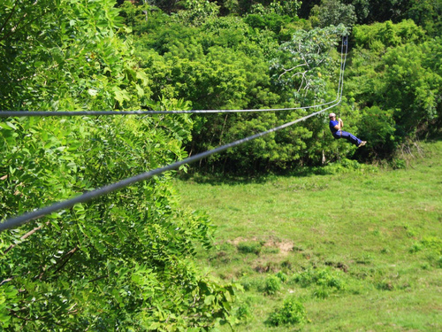 Roatan Honduras zip line and snorkel Cruise Excursion Reviews