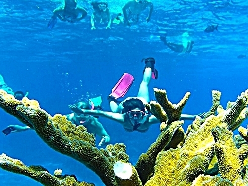 Roatan Honduras zip line and snorkel Excursion Reservations
