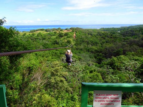 Roatan canopy snorkel Excursion Reservations