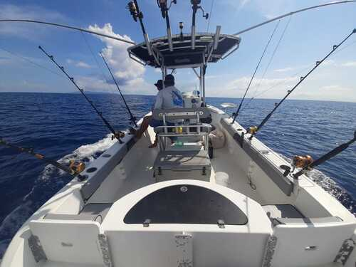 Roatan Private Island Sightseeing Boat Excursion Reviews
